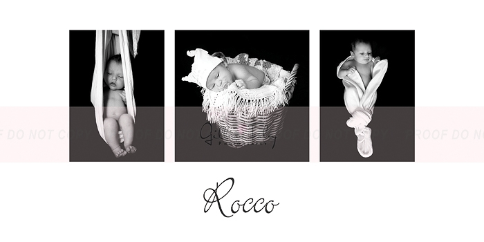 rocco10x20_3web